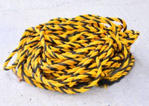 オニヤンマに似ている虎ロープの画像